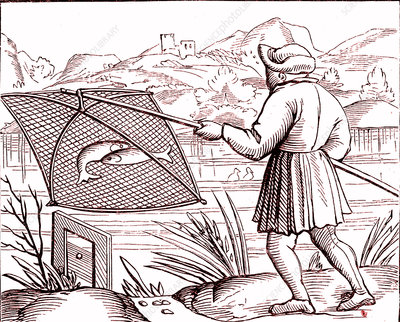 16th Century fisherman, illustration
