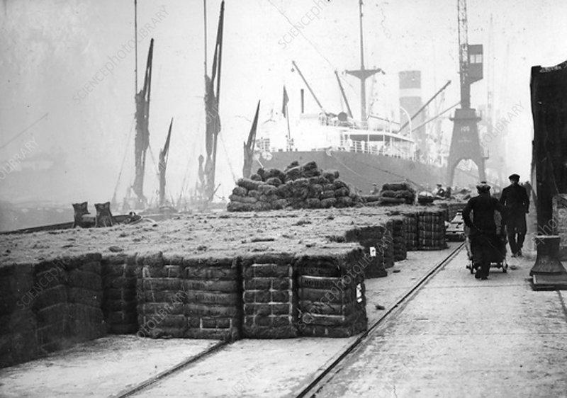 Coconut production, 20th century