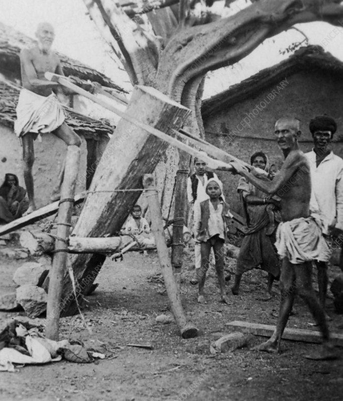 Native sawyers, India, c1927-c1931