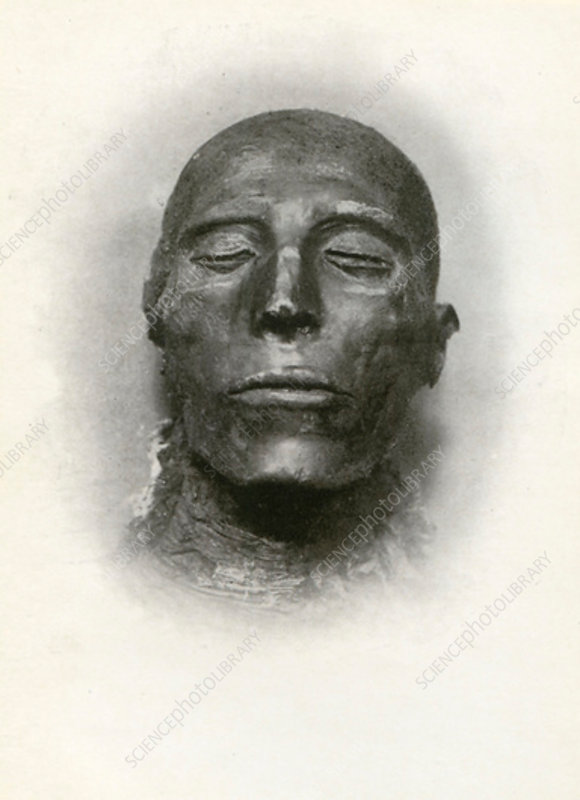 Head of the mummy of Sety I, Ancient Egyptian pharaoh