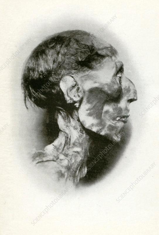 Head of the mummy of Rameses II, Ancient Egyptian pharaoh