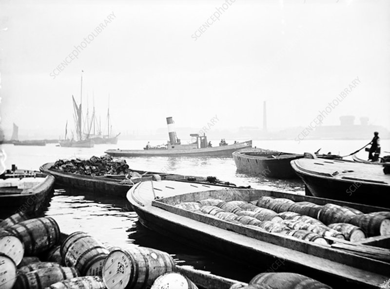 Steam tug moving between barges on the Thames, London, c1905
