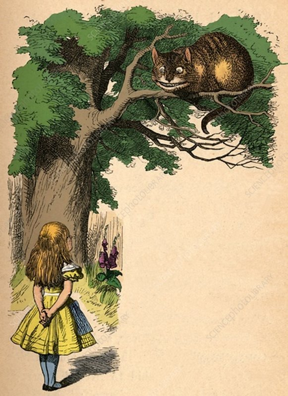 Alice and the Cheshire Cat, 1889