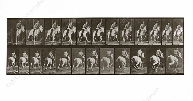 Galloping Horse with Rider, 1887