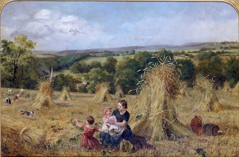 The Harvest Field, 1857-1858