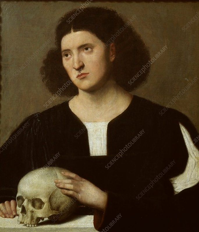 Portrait of a young Man with a Skull, c1510-1515