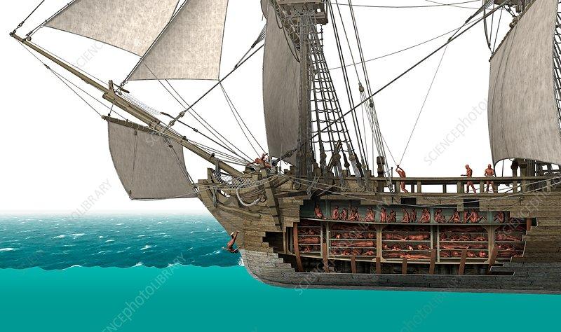 Slave ship, cutaway illustration