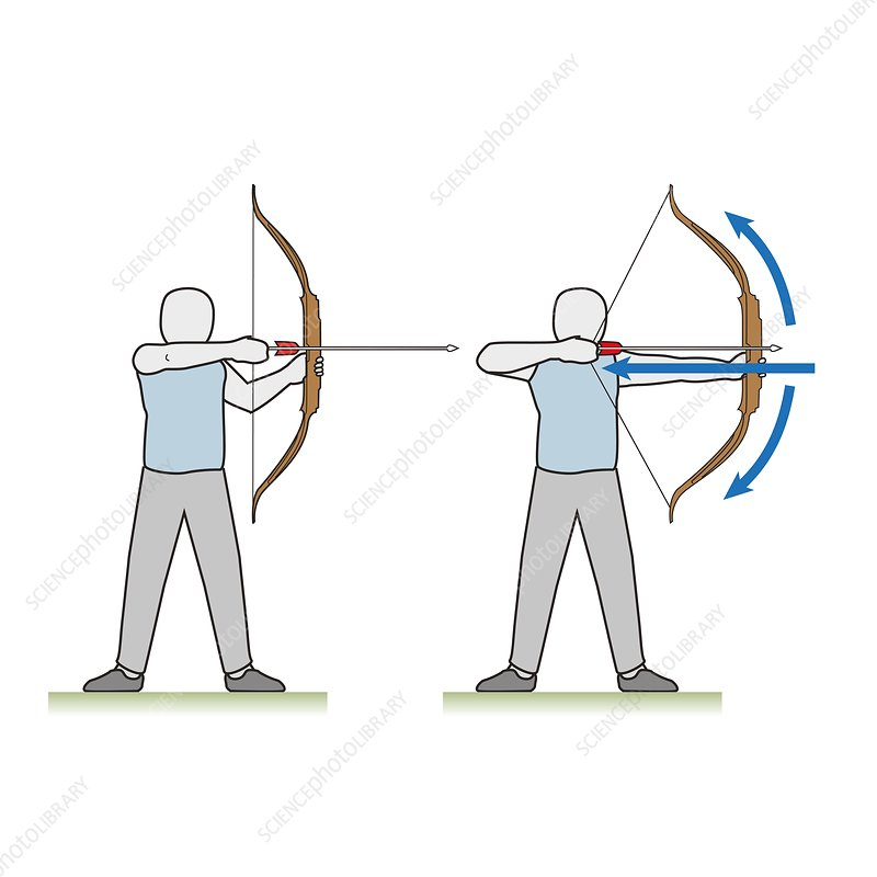 Archer with a longbow, illustration