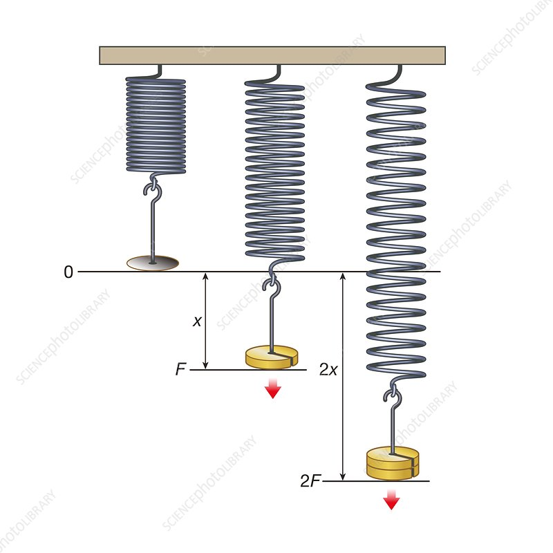 Hooke's law, illustration