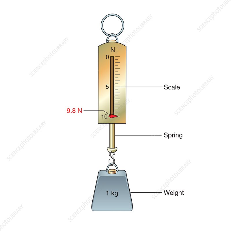 One kilogram mass on a newton meter, illustration