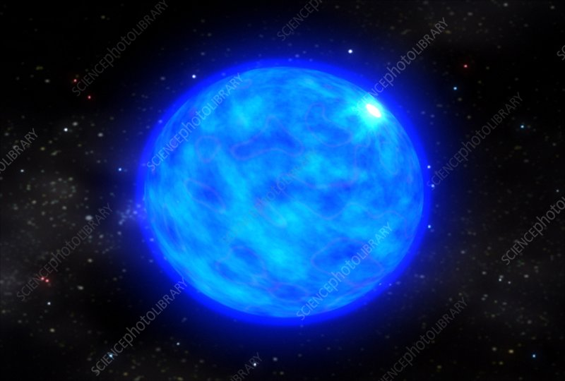Collapse of a Wolf-Rayet star