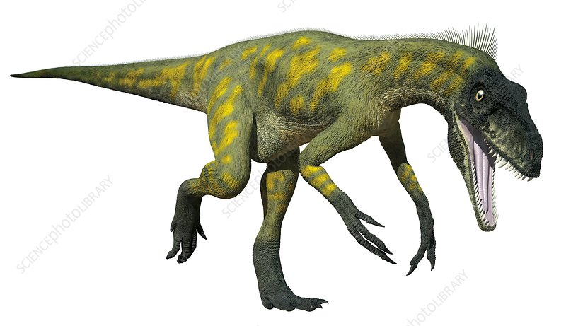 Herrerasaurus Illustration Stock Image C0429478 Science