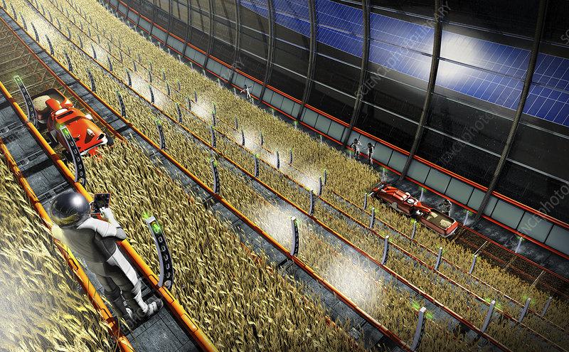 Space station farm, illustration