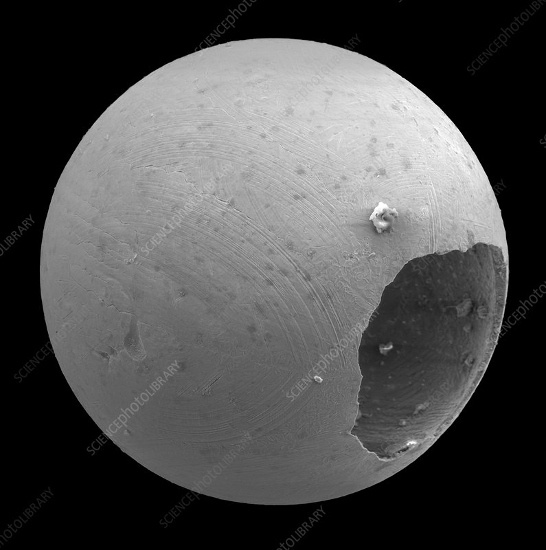 Micrometeorite Structure SEM