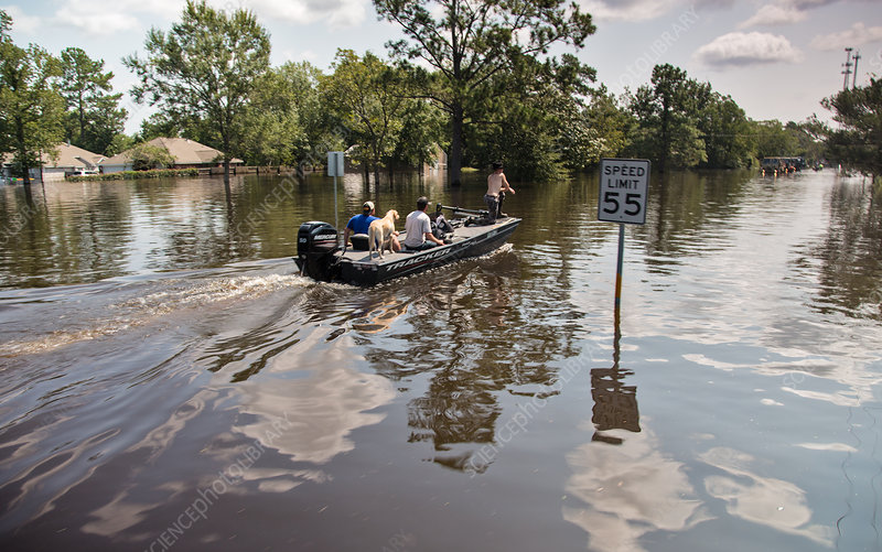 Flooding, Aftermath of Hurricane Harvey