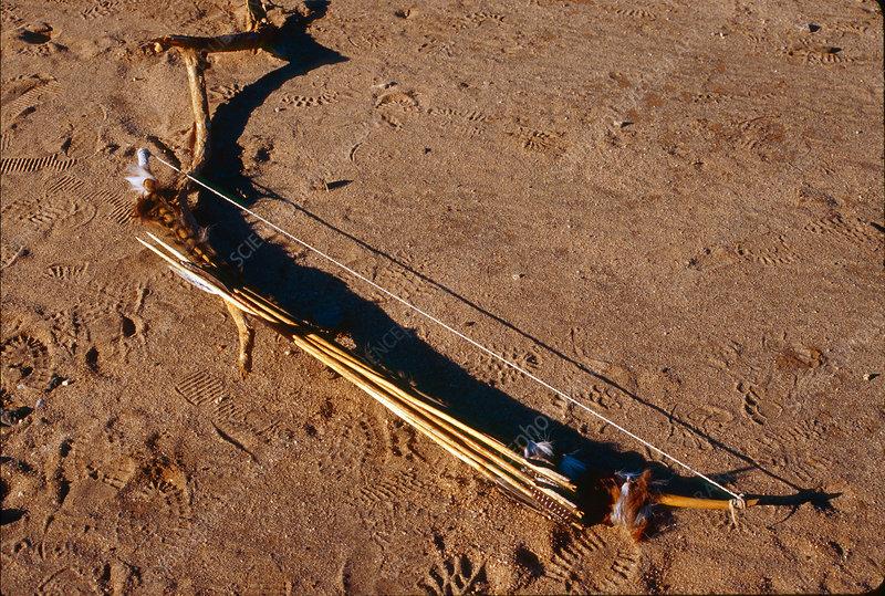 Hadza Bow and Arrows, Tanzania