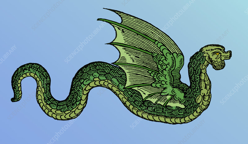 Winged Serpent, Legendary Creature
