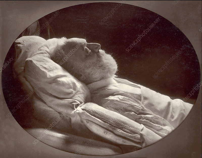 Victor Hugo, French Writer, on Deathbed, 1885