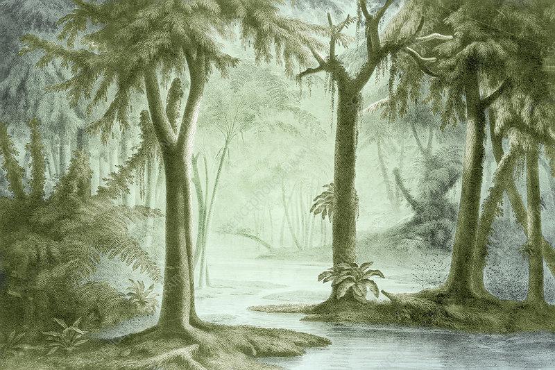 Prehistoric, Carboniferous Landscape
