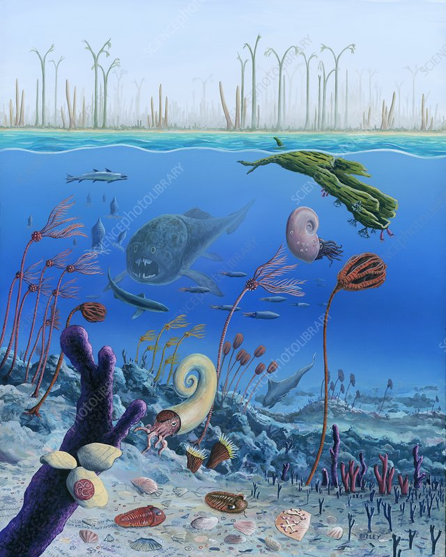 Middle devonian life, illustration