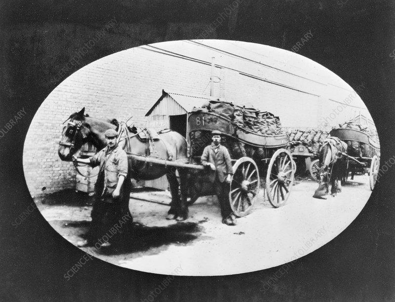 Loaded coal carts