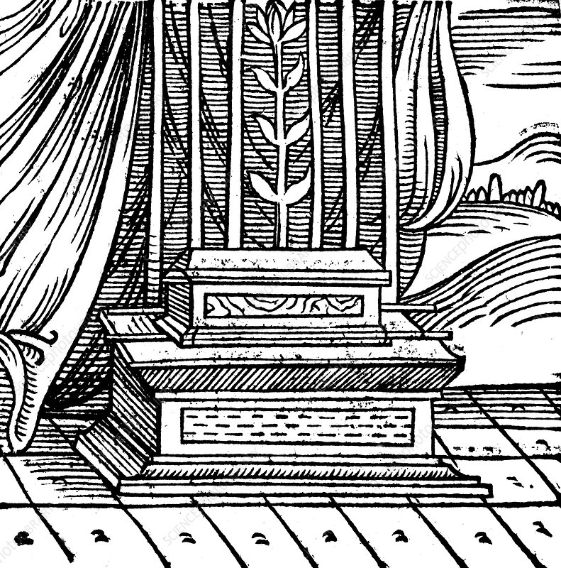 The Ark of the Covenant, 1557