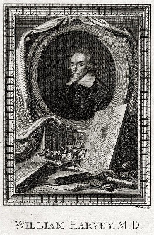 William Harvey', 1777