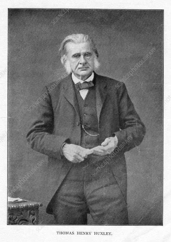 Thomas Henry Huxley, British biologist, c1870s