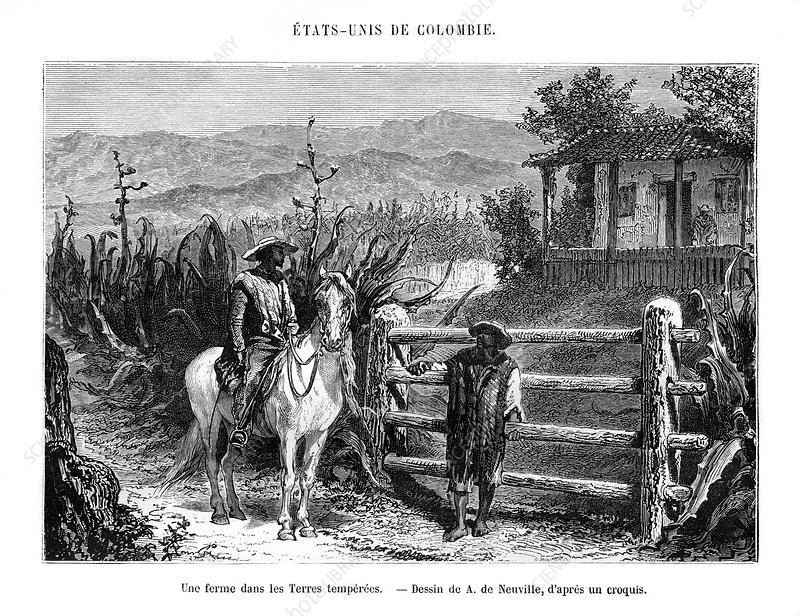 A farm, Colombia, South America, 19th century