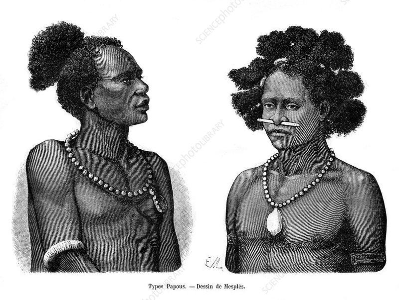 Papuan types, 19th century