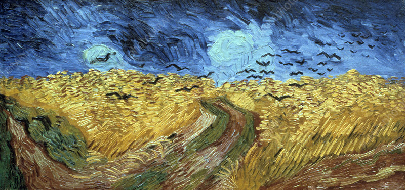 Crows Over Wheatfield', 1890