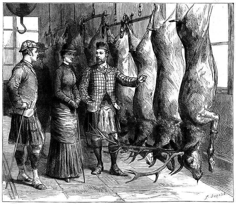 Duke of Fife's game larder, 1881