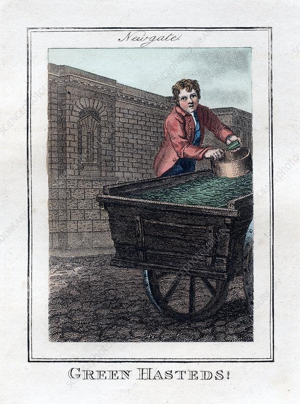 Green Hasteds', Newgate, London, 1805