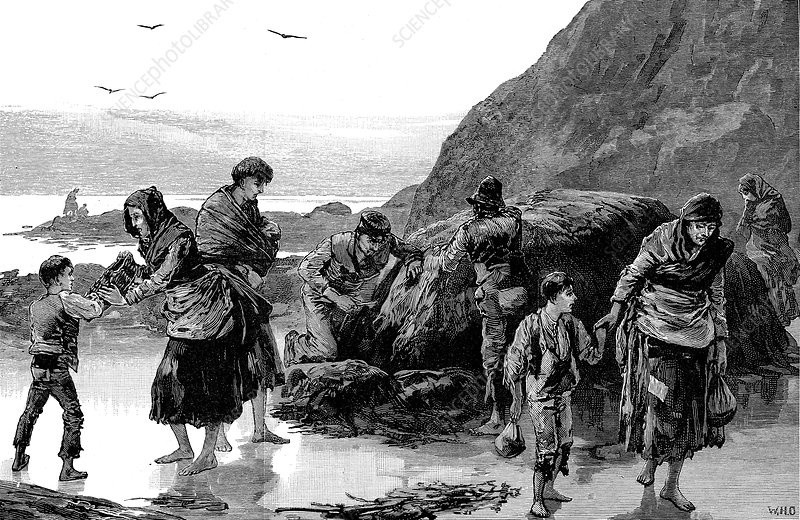Aftermath of famine, Ireland, 1840s
