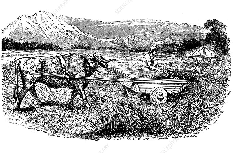 Reconstruction of Roman reaping cart, 1860