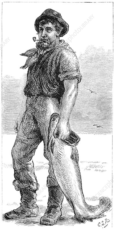 Typical Cape Cod fisherman, 1875