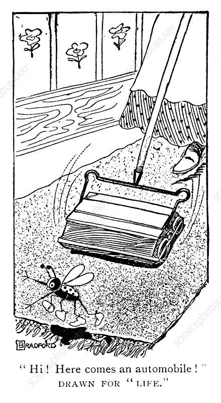 Carpet sweeper, c1900s