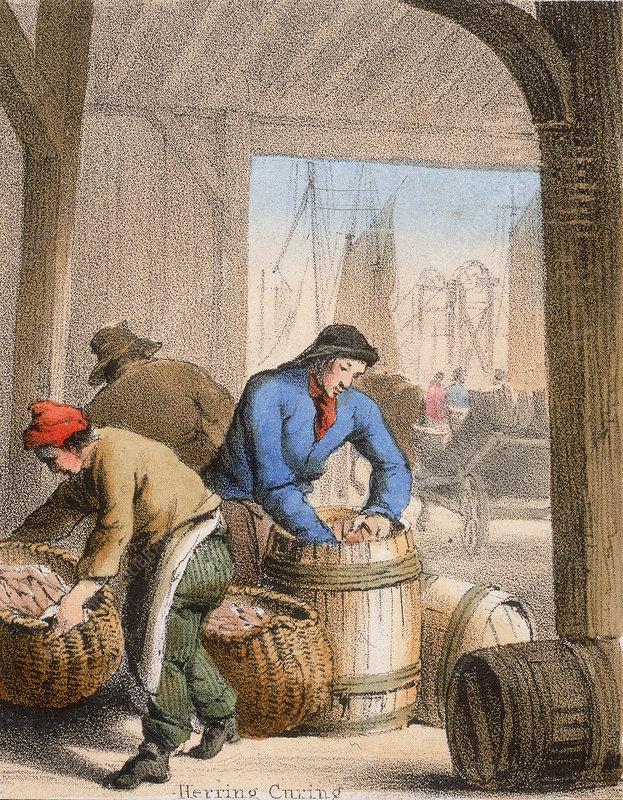 Herring Curing', c1845