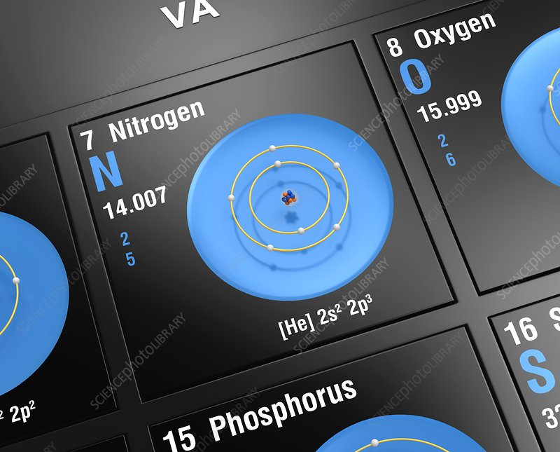 nitrogen, atomic structure - stock image - c045/6416 - science photo library