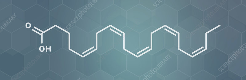 Eicasapentaenoic acid molecule