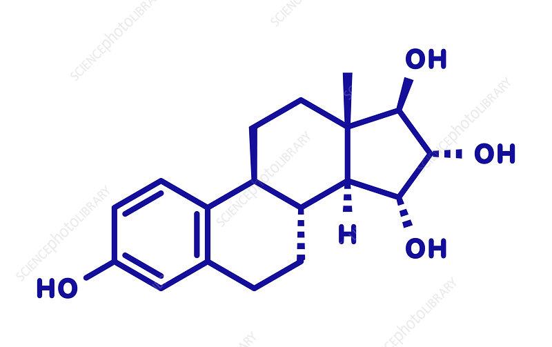 Estetrol natural estrogen hormone molecule