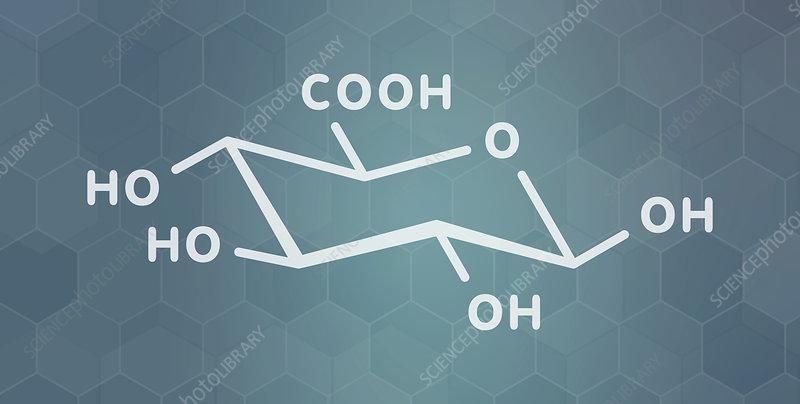 Glucuronic acid molecule
