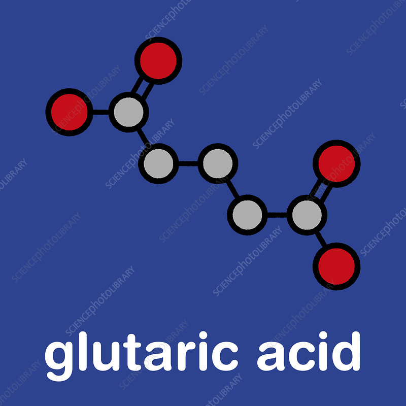 Glutaric acid molecule