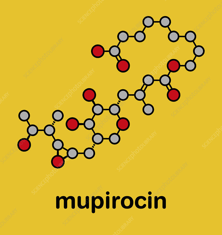 Mupirocin antibiotic drug molecule