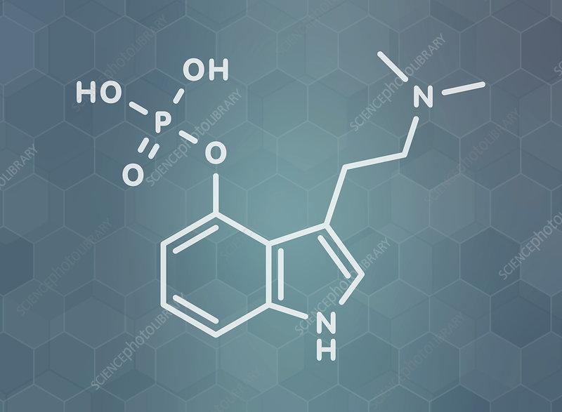 Psilocybin psychedelic mushroom molecule