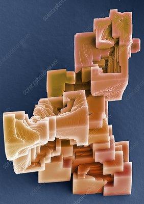 Calcium carbonate crystals, SEM