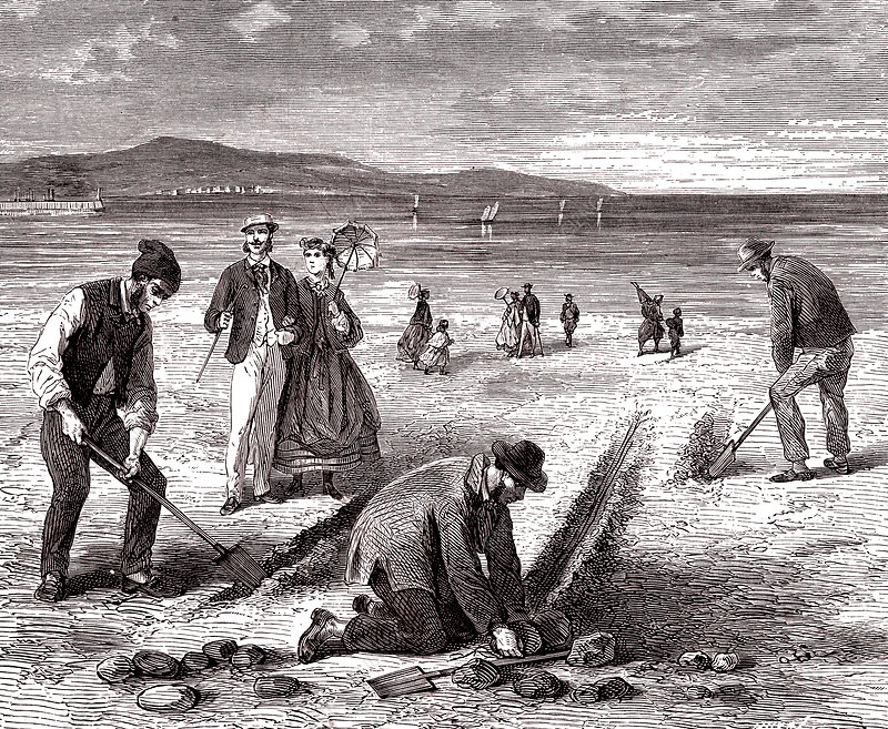 Preparing sand lines for fishing, 19th century