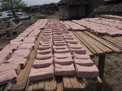 Sago cake drying in the sun, Indonesia