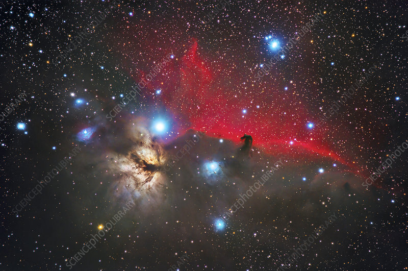 The Horse Head and Flame Nebulae in Orion, optical image