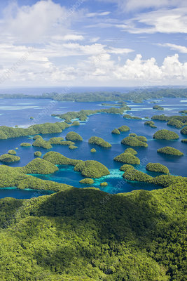 Rock islands of Palau. Micronesia